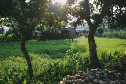 The Sights, Sounds And People Of Chitwan, Nepal (19)