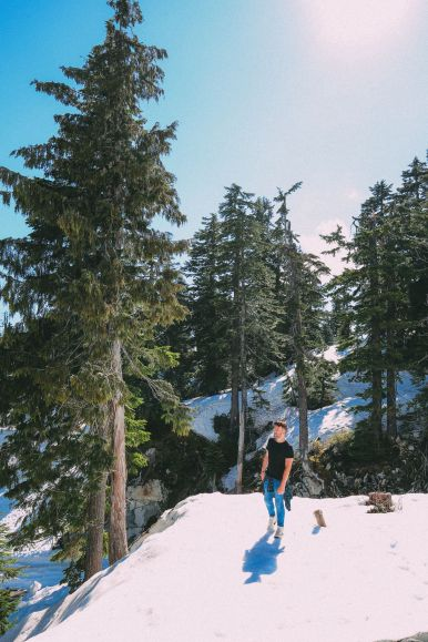 Finding Grizzly Bears On Grouse Mountain... In Vancouver, Canada (39)