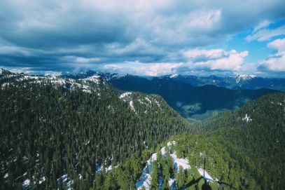 Finding Grizzly Bears On Grouse Mountain... In Vancouver, Canada (40)