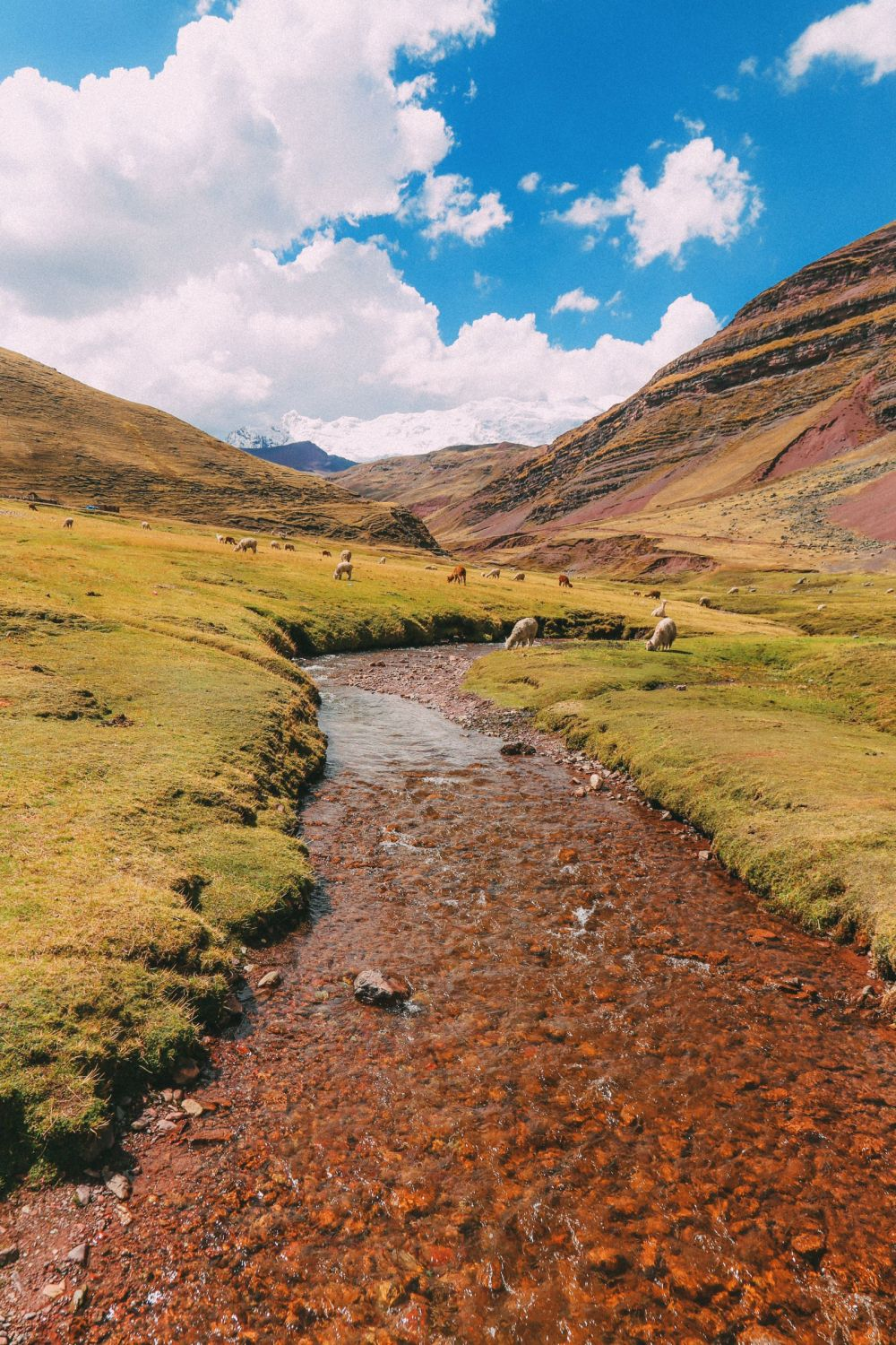 The Amazing Rainbow Mountains Of Peru – How To Get There And Other Things You Need To Know (101)