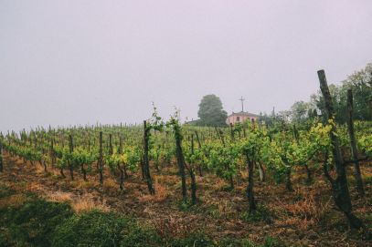 The Most Amazing Noble Villa And An Afternoon In Pizzighettone… In Lombardy, Italy (1)
