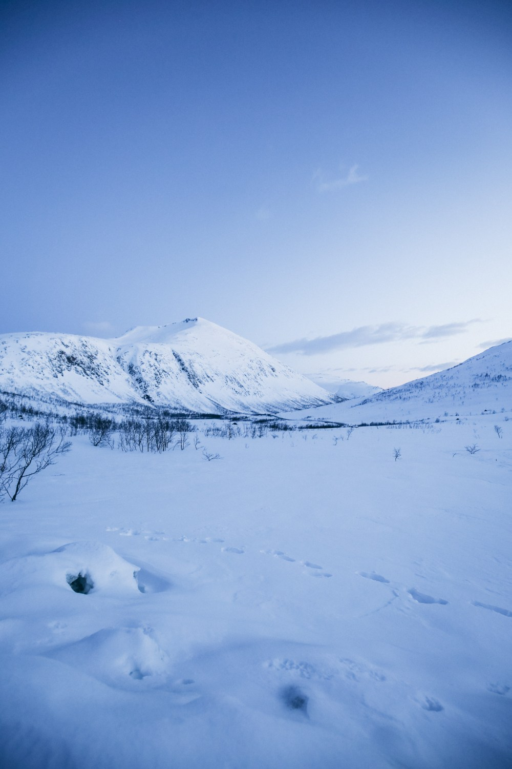 A Trip To The Arctic Circle... In Tromso, Norway (4)