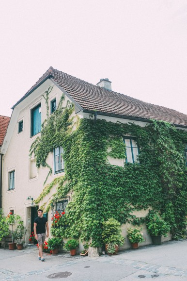 A Trip To Wachau - The Most Beautiful Valley In Austria (29)