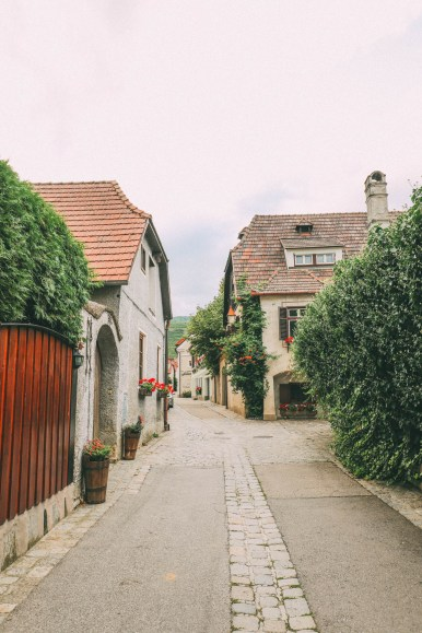 A Trip To Wachau - The Most Beautiful Valley In Austria (31)