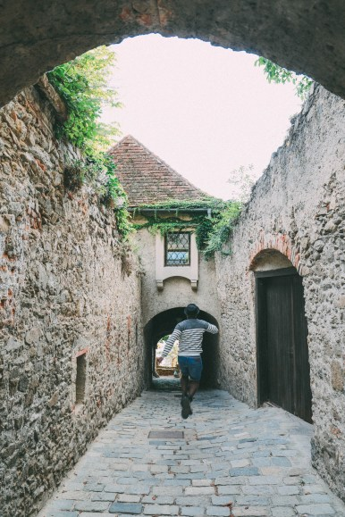 A Trip To Wachau - The Most Beautiful Valley In Austria (56)