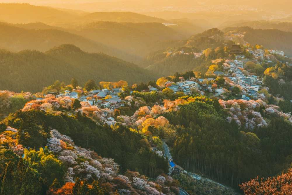 Your Complete Guide On Things To See And Do In Japan (18)
