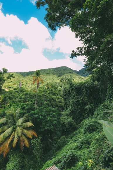 Photos And Postcards From St Kitts... In The Caribbean (1)