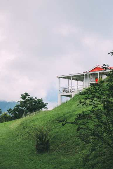 Photos And Postcards From St Kitts... In The Caribbean (35)