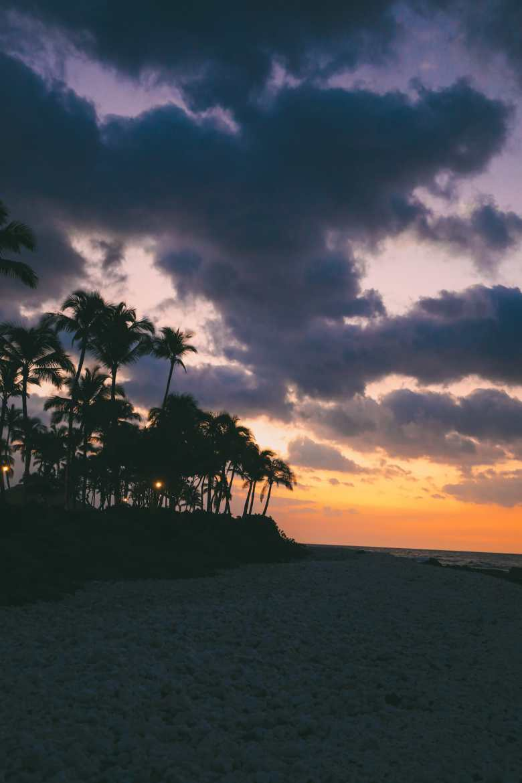 11 Really Impressive Reasons Why You Need To Visit Hawaii (30)