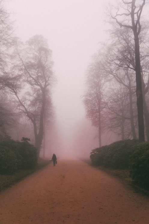 The Real-Life Fairytale Kingdom Of Potsdam, Germany (67)