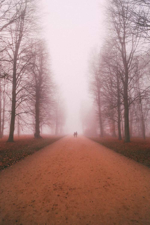 The Real-Life Fairytale Kingdom Of Potsdam, Germany (68)