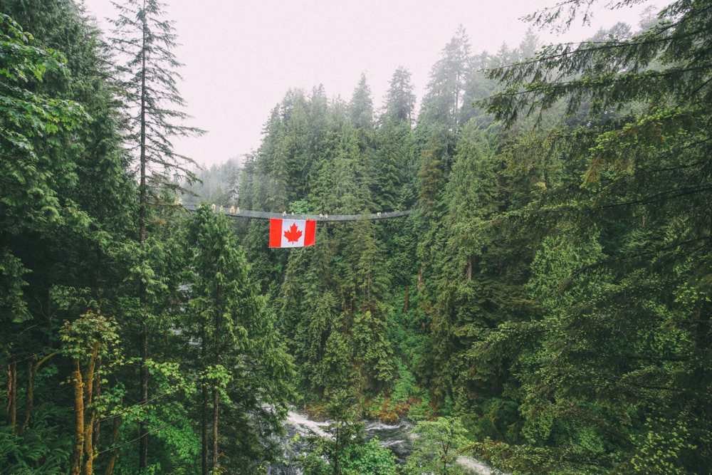 How To Spend A Lazy Day In Vancouver, Canada...(Plus, Exploring The Incredible Capilano Suspension Bridge) (14)