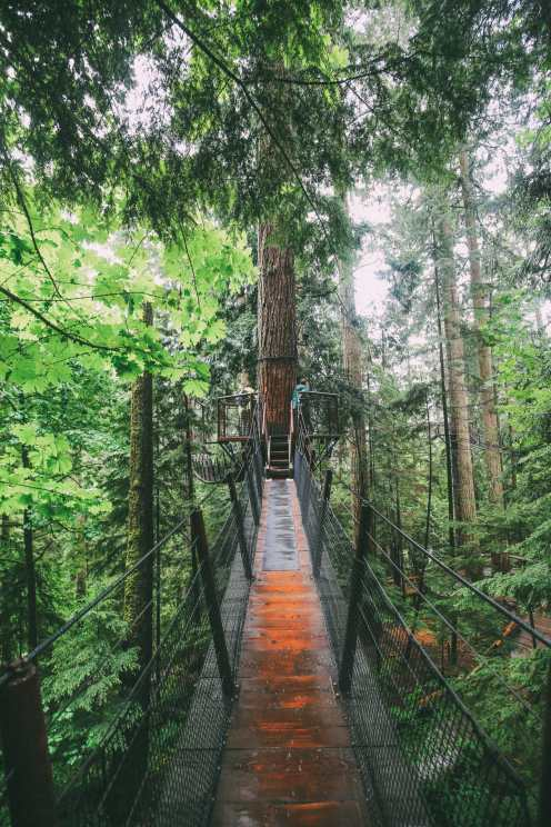 How To Spend A Lazy Day In Vancouver, Canada...(Plus, Exploring The Incredible Capilano Suspension Bridge) (28)