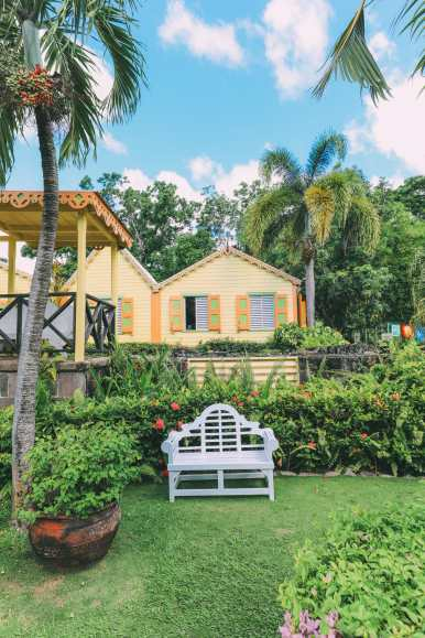 First Impressions Of The Island Of St Kitts (39)