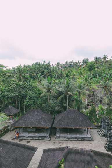 Bali Travel - Tegalalang Rice Terrace In Ubud And Gunung Kawi Temple (44)