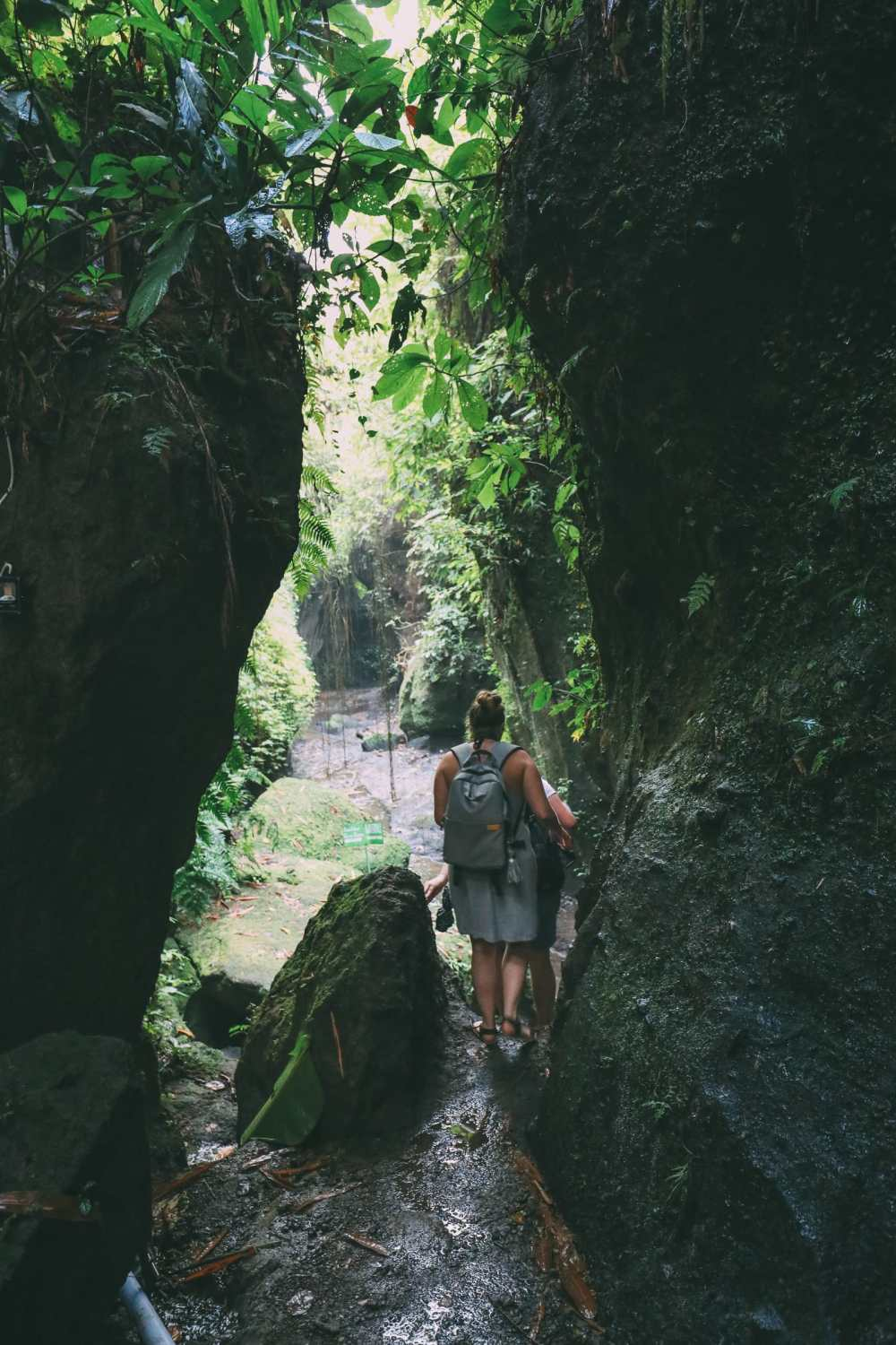 Finding A Secret Waterfall in Bali, Tirta Empul Temple And Mount Batur Volcano (35)