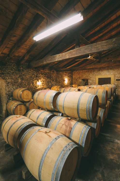 French Wine, French Castles And Delicious French Food - A Trip To French Wine Country (30)