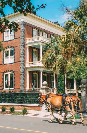 9 Things To Do In Charleston, South Carolina (19)