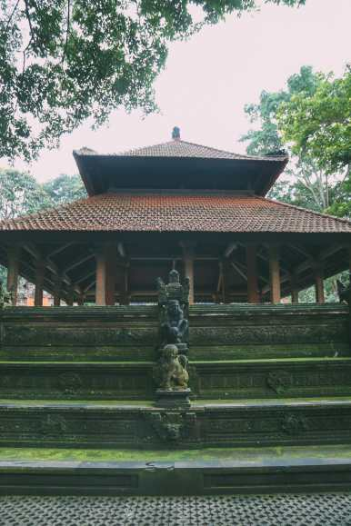 Ubud Monkey Forest In Bali - Things To Know Before You Visit (9)