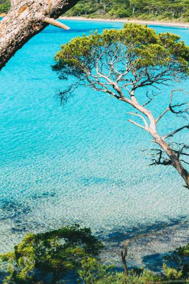 5 Surprisingly Tropical Islands To Visit In Europe (5)