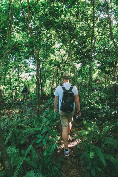 Hiking To The Top Of A Volcano... In the Caribbean! (1)