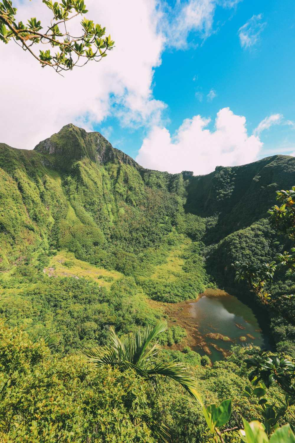 Hiking To The Top Of A Volcano... In the Caribbean! (17)