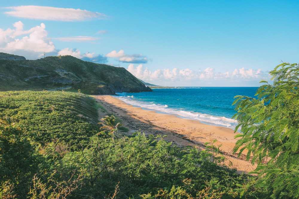 Tropical Adventures In The Island Of St Kitts... (8)