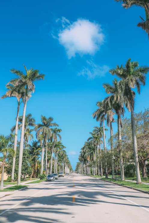Sunny Days... In Fort Lauderdale, Florida (3)