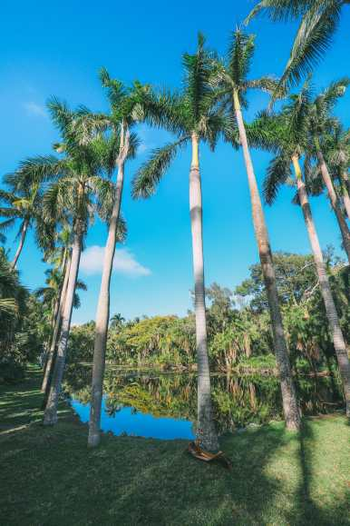 Sunny Days... In Fort Lauderdale, Florida (23)