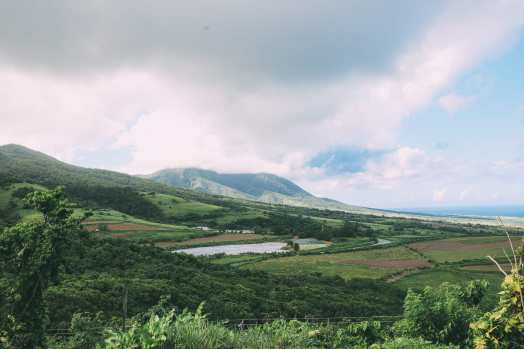 Down At The Beach House... In St Kitts, The Caribbean (36)