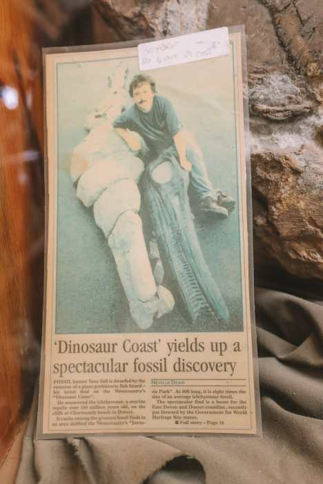Searching For Dinosaurs And Fossils On The Jurassic Coast Of England (13)