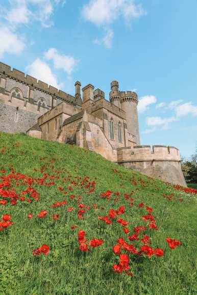 The Magnificent Arundel Castle... In West Sussex, England (20)