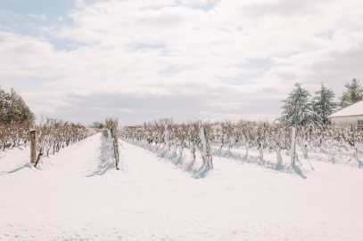 Ice Wine And Snow Storms... In Niagara-on-the-Lake, Canada (52)