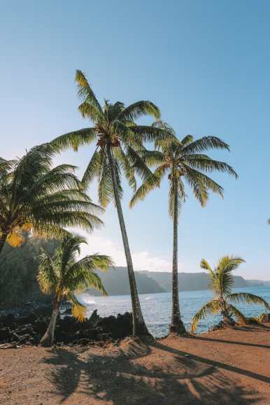 24 Hours In Maui, Hawaii (46)
