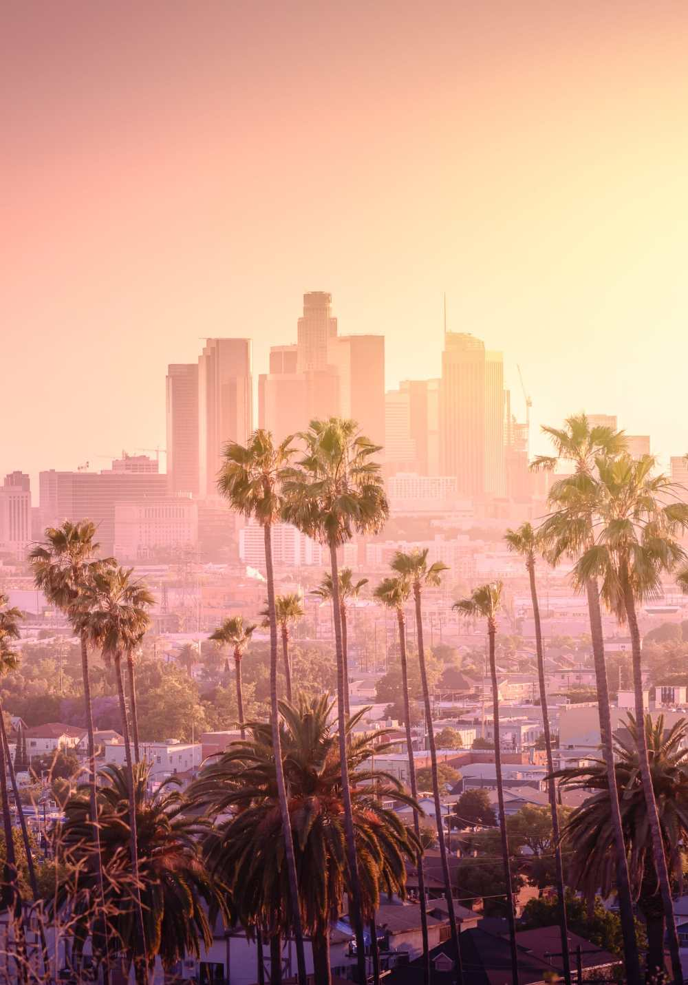 21 Fun Cities In The US You Have To Visit (21)