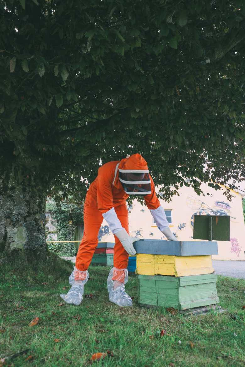 How To Be A Bee-Keeper For A Day In England (2)