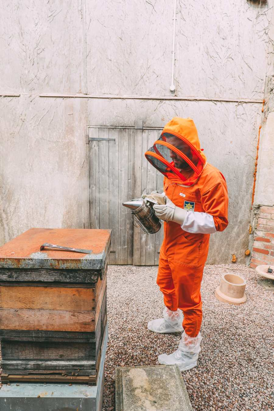 How To Be A Bee-Keeper For A Day In England (5)