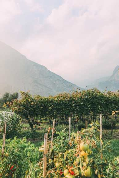Where To Eat And Drink In Lake Garda, Trentino, Italy (33)