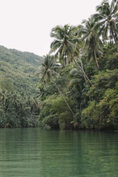 Photos And Postcards From Bohol In The Philippines (12)
