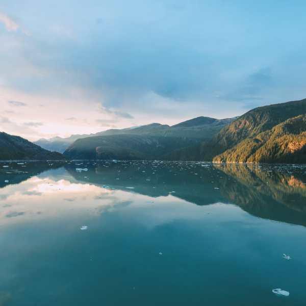 Sailing The Impressive Tracy Arm And Endicott Arm Fjord To The Dawes Glacier, Alaska (10)