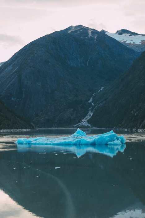 Sailing The Impressive Tracy Arm And Endicott Arm Fjord To The Dawes Glacier, Alaska (13)