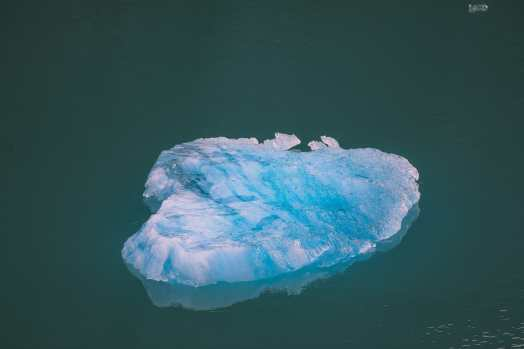 Sailing The Impressive Tracy Arm And Endicott Arm Fjord To The Dawes Glacier, Alaska (23)