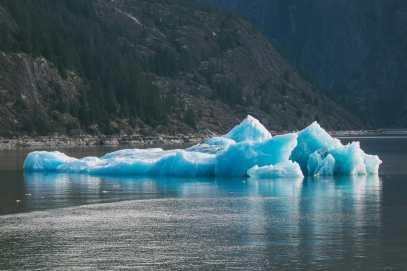 Sailing The Impressive Tracy Arm And Endicott Arm Fjord To The Dawes Glacier, Alaska (36)