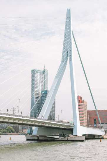 Best Things To Do In Rotterdam, Netherlands (6)