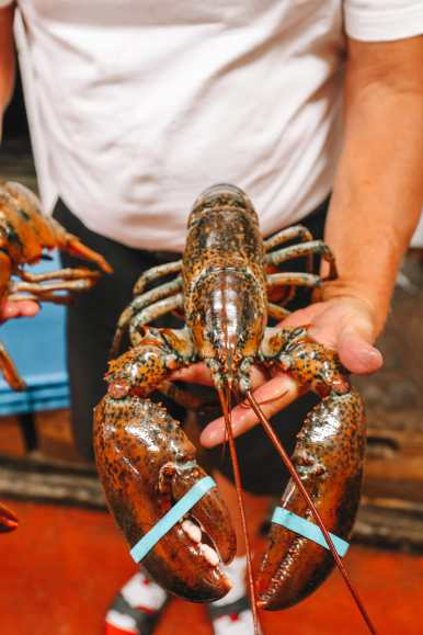 The Lobster Capital Of The World (29)
