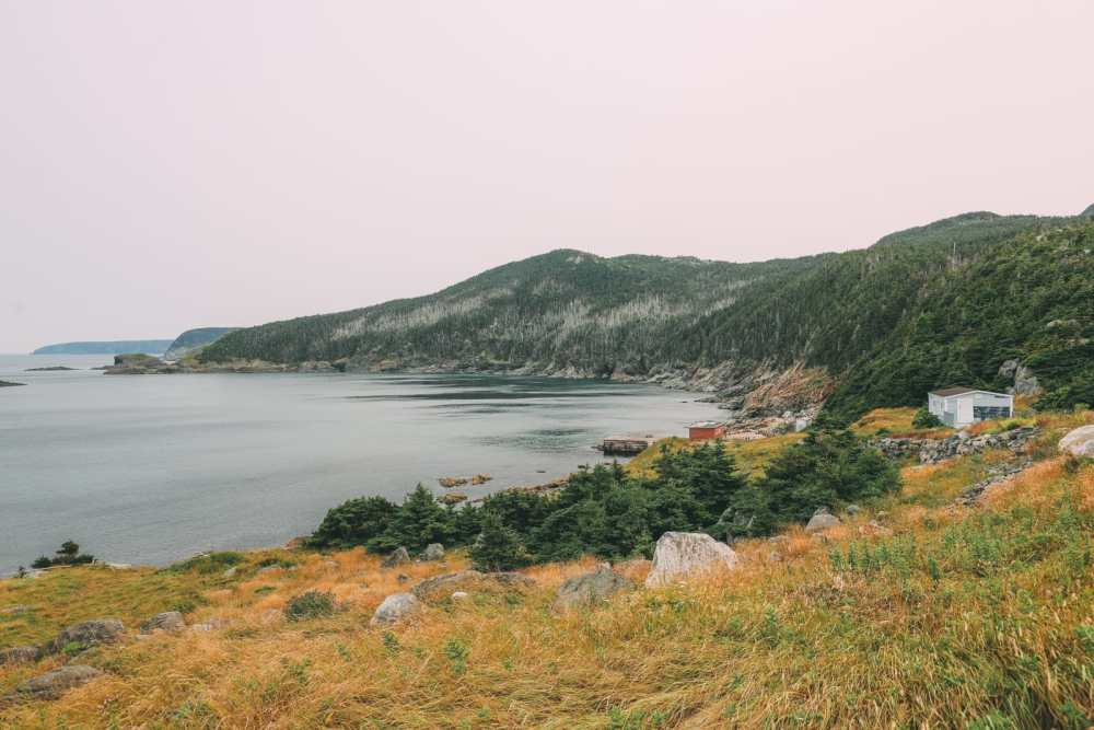 24 Hours In St Johns, Newfoundland (38)