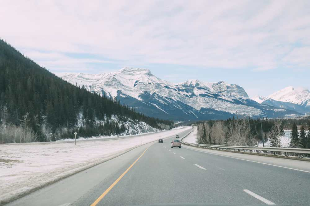 Grotto Canyon, Wolfdogs And The Canadian Rockies (1)