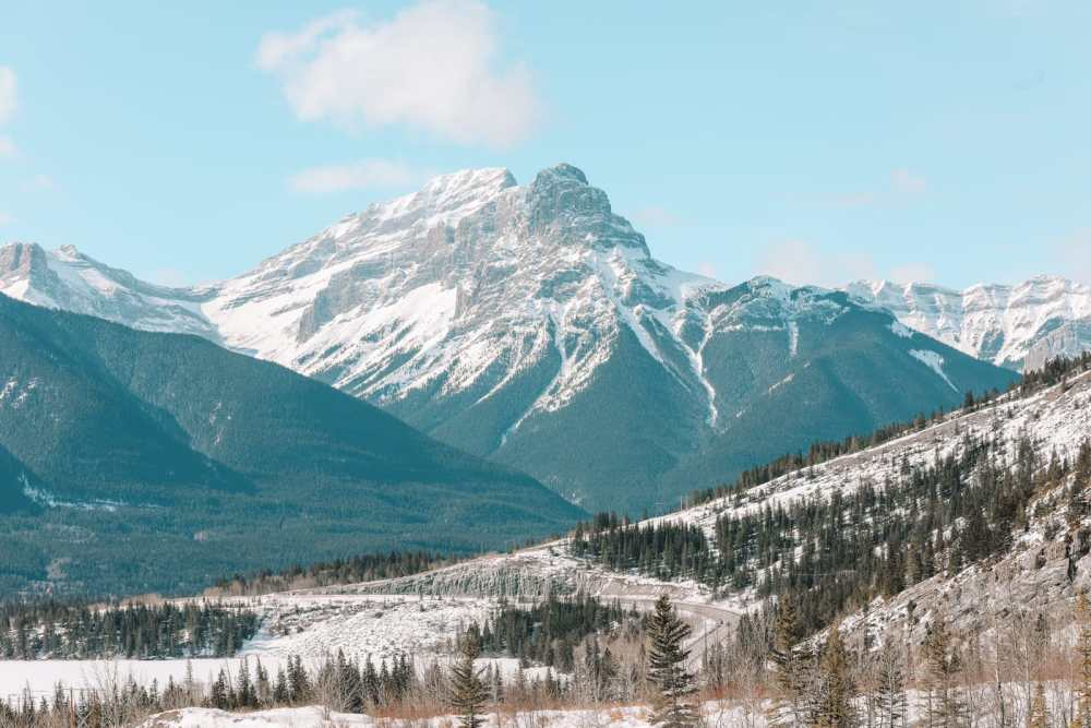Grotto Canyon, Wolfdogs And The Canadian Rockies (3)