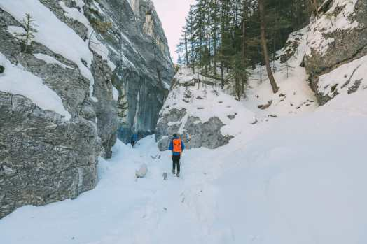 Grotto Canyon, Wolfdogs And The Canadian Rockies (25)