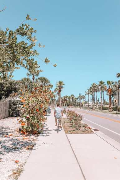 Sunny Days In St Pete Beach, Florida... (51)
